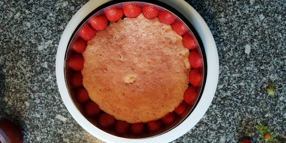 fraisier-24